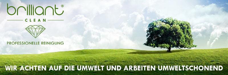 Fensterputzer in Tirol - Umweltfreundlich